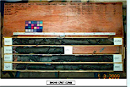 地質調查報告評估